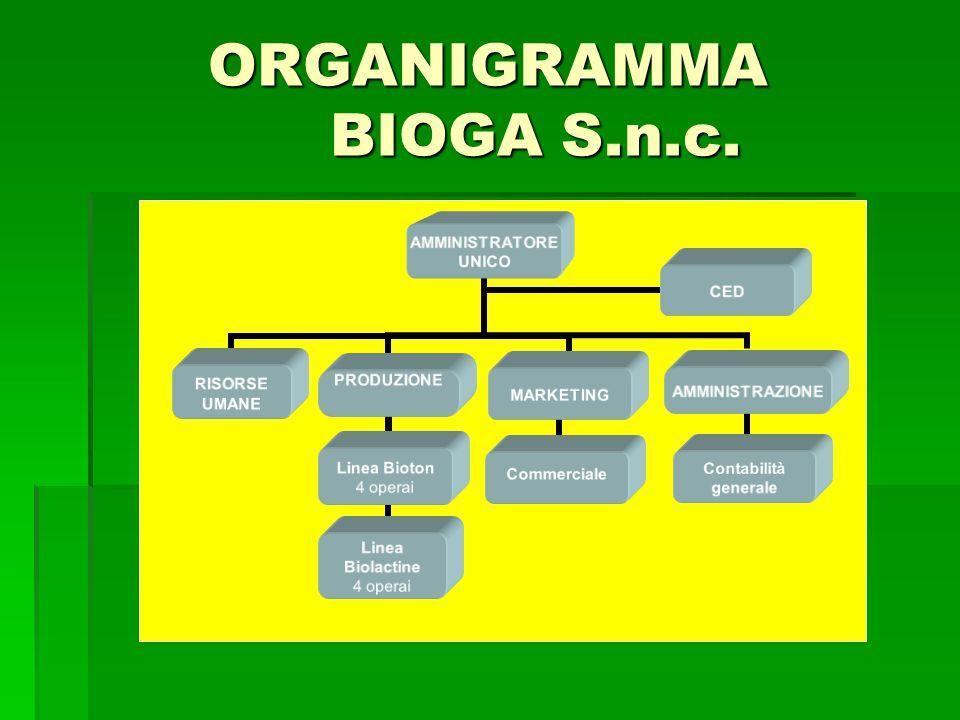 ORGANIGRAMMA BIOGA S.n.c. AMMINISTRATORE UNICO MARKETINGCommerciale PRODUZIONE Linea Bioton 4 operai Linea Biolactine 4 operai AMMINISTRAZIONE Contabi