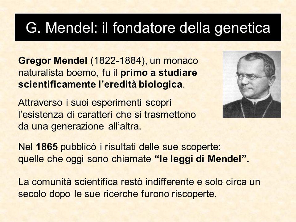 La struttura del DNA è stata scoperta nel 1953 Il DNA è formato da due filamenti disposti a doppia elica .