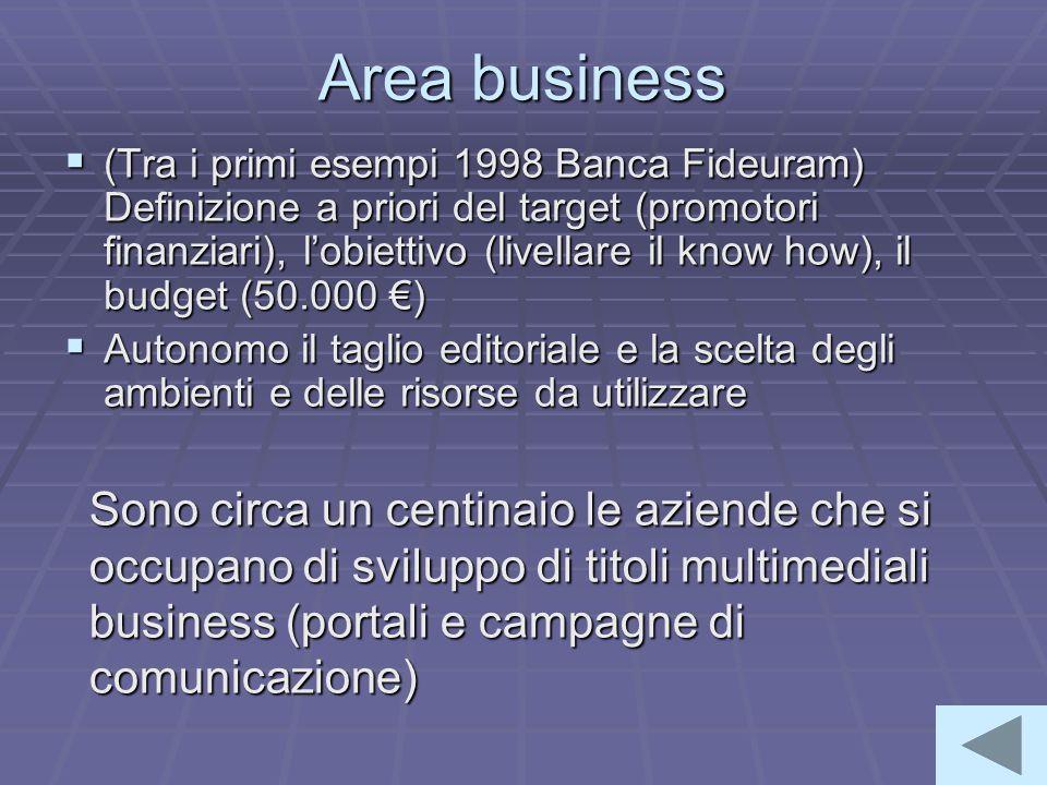 Area business  (Tra i primi esempi 1998 Banca Fideuram) Definizione a priori del target (promotori finanziari), l'obiettivo (livellare il know how), il budget (50.000 €)  Autonomo il taglio editoriale e la scelta degli ambienti e delle risorse da utilizzare Sono circa un centinaio le aziende che si occupano di sviluppo di titoli multimediali business (portali e campagne di comunicazione)