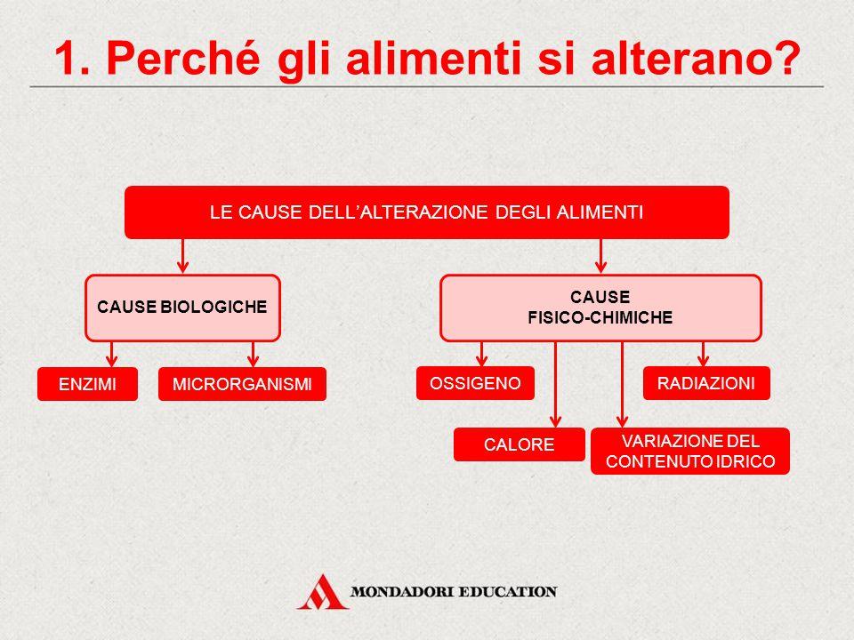 CONSERVANTI ARTIFICIALI 4.