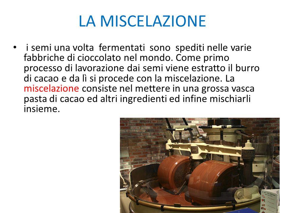 LA MISCELAZIONE i semi una volta fermentati sono spediti nelle varie fabbriche di cioccolato nel mondo. Come primo processo di lavorazione dai semi vi