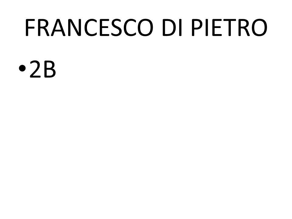 FRANCESCO DI PIETRO 2B