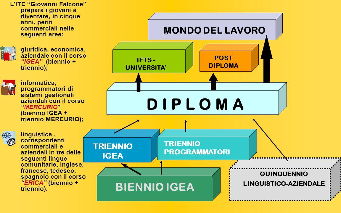 QUINQUENNIO LINGUISTICO-AZIENDALE BIENNIO IGEA TRIENNIO IGEA TRIENNIO PROGRAMMATORI D I P L O M A MONDO DEL LAVORO POST DIPLOMA IFTS - UNIVERSITA' L'ITC Giovanni Falcone prepara i giovani a diventare, in cinque anni, periti commerciali nelle seguenti aree: giuridica, economica, aziendale con il corso IGEA (biennio + triennio); informatica, programmatori di sistemi gestionali aziendali con il corso MERCURIO (biennio IGEA + triennio MERCURIO); linguistica, corrispondenti commerciali e aziendali in tre delle seguenti lingue comunitarie, inglese, francese, tedesco, spagnolo con il corso ERICA (biennio + triennio).