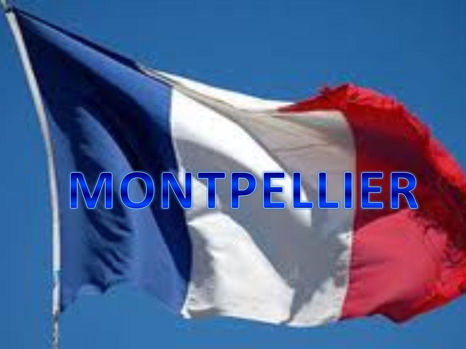 Montpellier è situata a sud della Francia, nella regione di Lanquedoc- Rousillon.