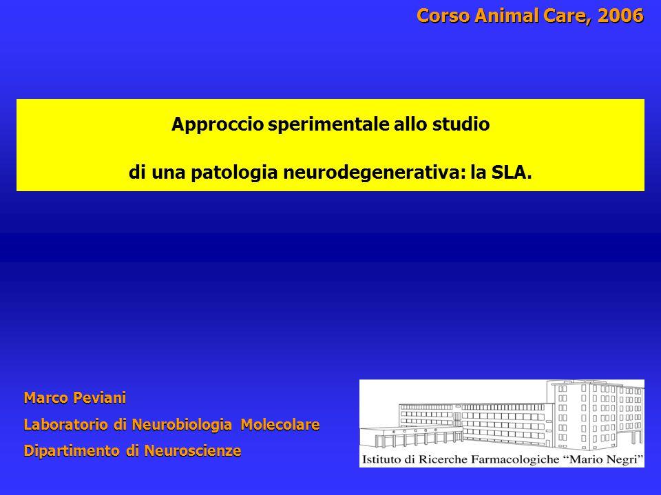 Patologia neurodegenerativa: Sclerosi Laterale Amiotrofica Animale da laboratorio / modello di patologia  La caratterizzazione del modello  Vantaggi  Limiti  Esempi applicativi