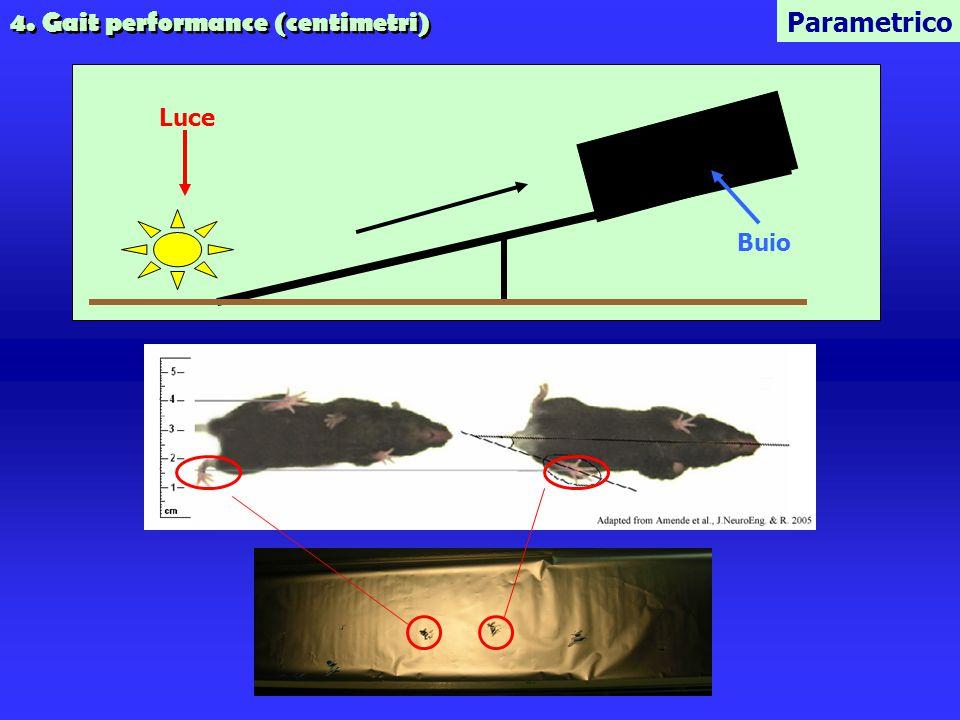 Luce Buio 4. Gait performance (centimetri) Parametrico