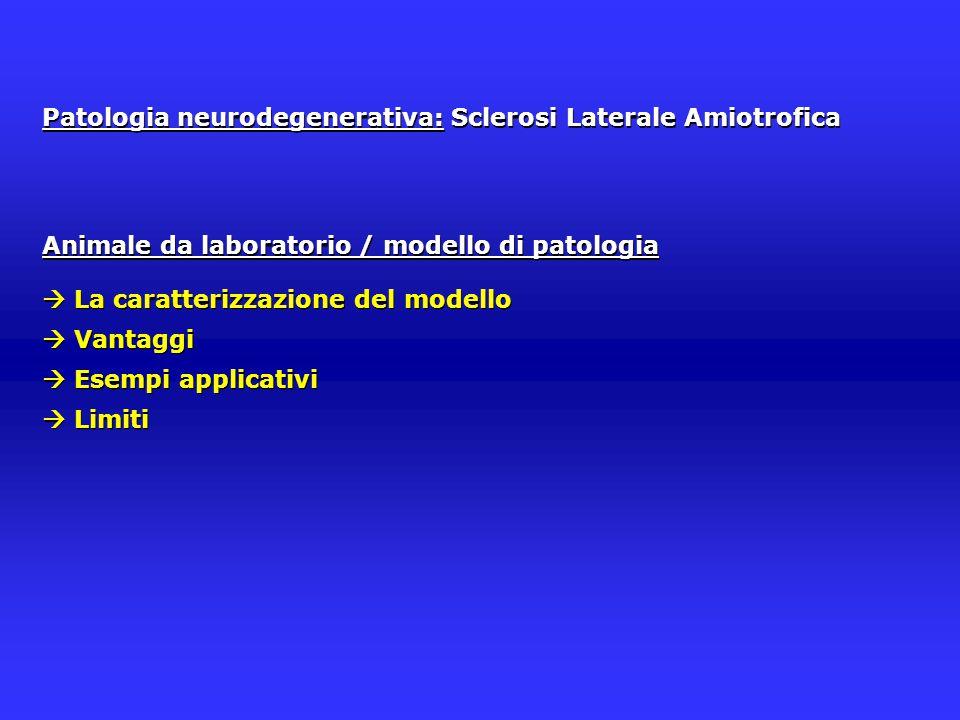 Patologia neurodegenerativa: Sclerosi Laterale Amiotrofica Animale da laboratorio / modello di patologia  La caratterizzazione del modello  Vantaggi