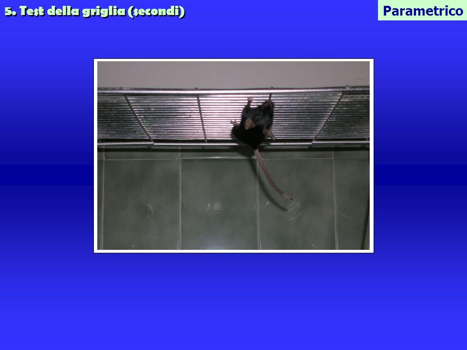 5. Test della griglia (secondi) Parametrico