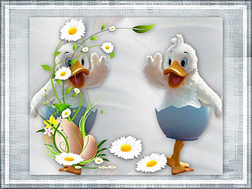 Una colomba è volata non è colorata ma buona e luminosa più bella di una rosa porta la Pasqua gioiosa e nei cuori, orgogliosa, la pace vi posa.