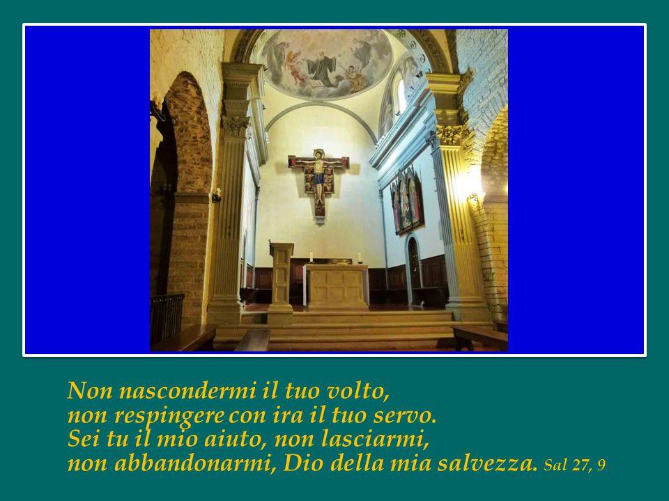 L'anima mia ha sete di Dio, del Dio vivente: quando verrò e vedrò il volto di Dio? Sal 42, 3