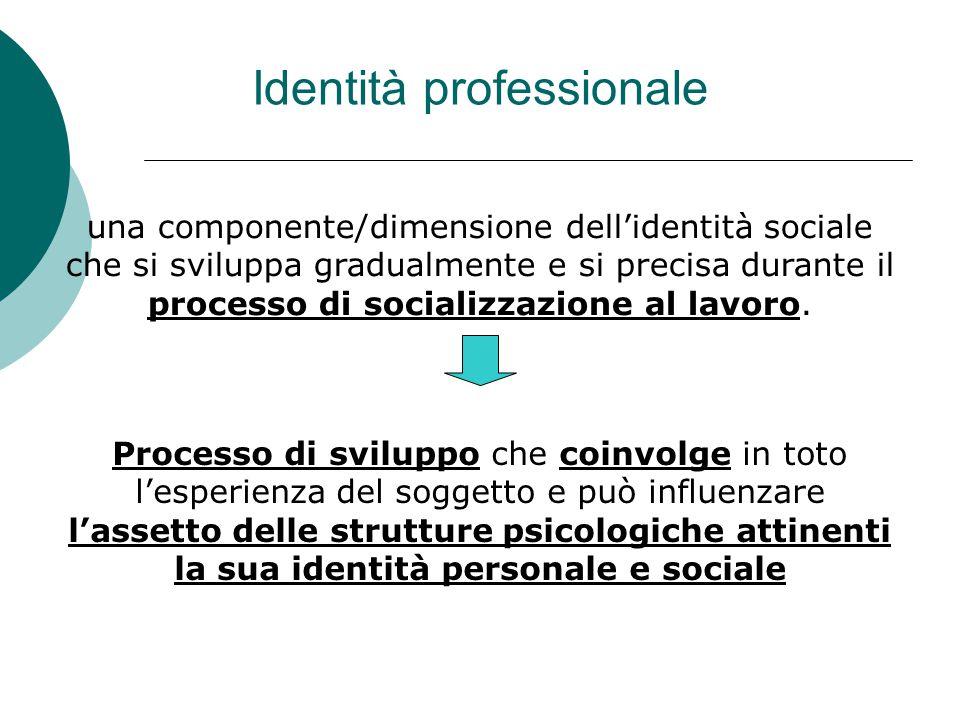 una componente/dimensione dell'identità sociale che si sviluppa gradualmente e si precisa durante il processo di socializzazione al lavoro. Processo d