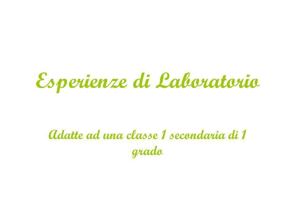 Esperienze di Laboratorio Adatte ad una classe 1 secondaria di 1 grado