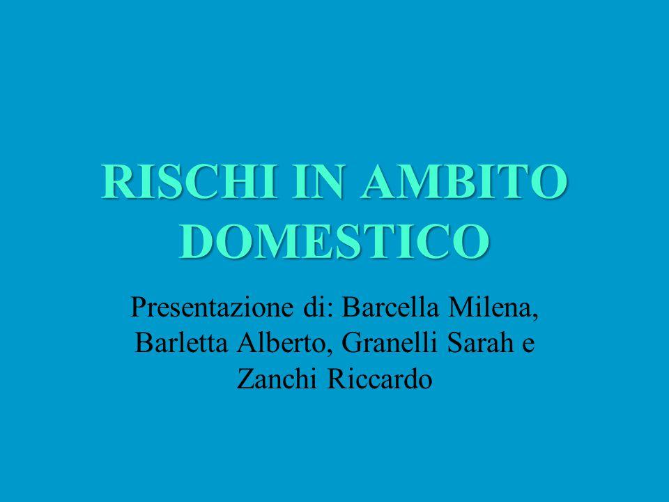 RISCHI IN AMBITO DOMESTICO Presentazione di: Barcella Milena, Barletta Alberto, Granelli Sarah e Zanchi Riccardo