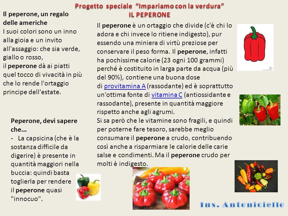 Il peperone, un regalo delle americhe I suoi colori sono un inno alla gioia e un invito all'assaggio: che sia verde, giallo o rosso, il peperone dà ai
