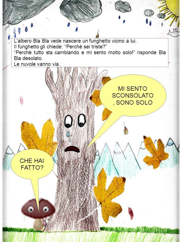 """CHE HAI FATTO? MI SENTO SCONSOLATO, SONO SOLO L'albero Bla Bla vede nascere un funghetto vicino a lui. Il funghetto gli chiede: """"Perchè sei triste?"""" """""""