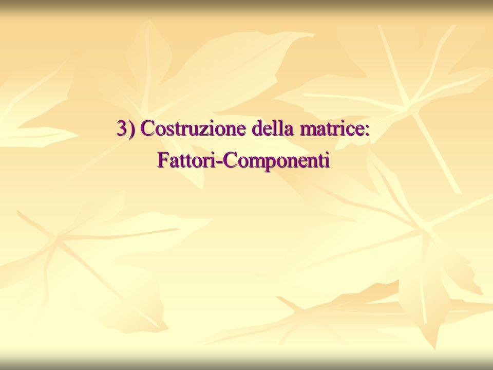 3) Costruzione della matrice: Fattori-Componenti