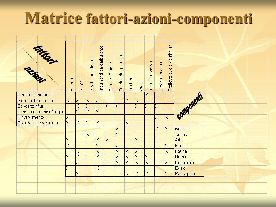 Matrice fattori-azioni-componenti