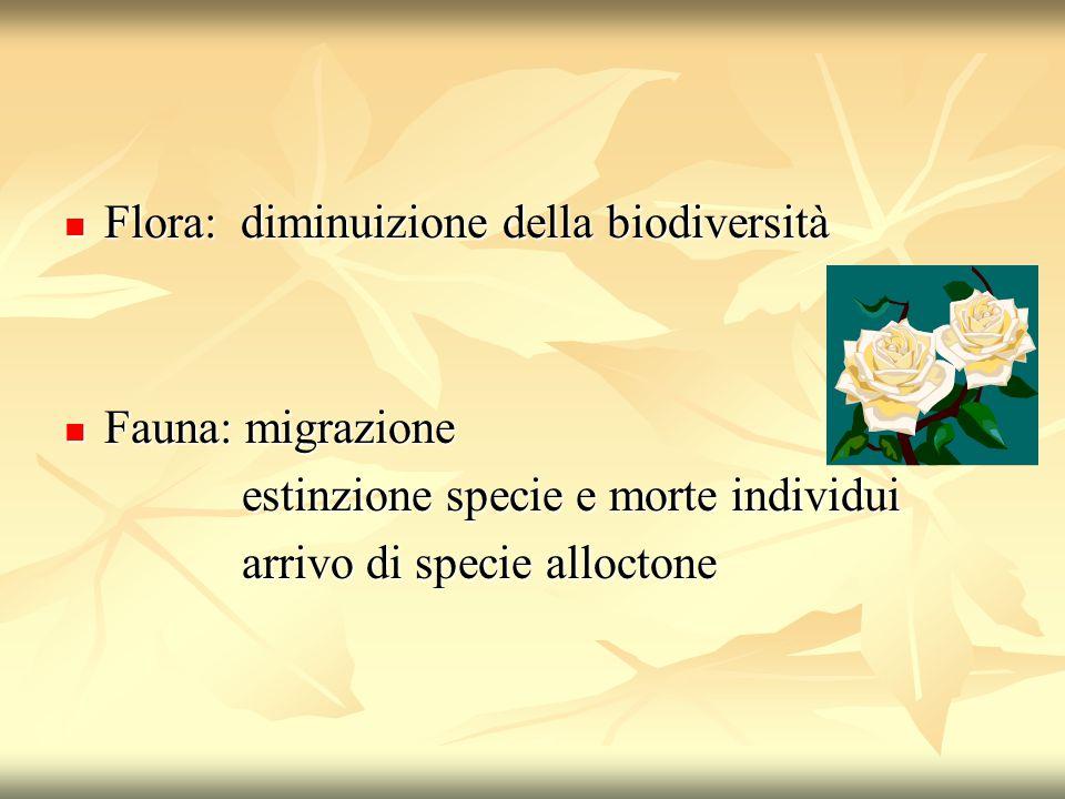 Flora: diminuizione della biodiversità Flora: diminuizione della biodiversità Fauna: migrazione Fauna: migrazione estinzione specie e morte individui estinzione specie e morte individui arrivo di specie alloctone arrivo di specie alloctone