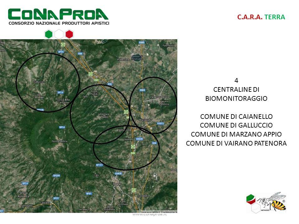 www.conaproa.it C.A.R.A. TERRA 4 CENTRALINE DI BIOMONITORAGGIO COMUNE DI CAIANELLO COMUNE DI GALLUCCIO COMUNE DI MARZANO APPIO COMUNE DI VAIRANO PATEN
