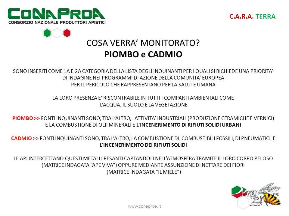 C.A.R.A. TERRA COSA VERRA' MONITORATO.