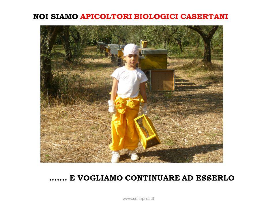 www.conaproa.it NOI SIAMO APICOLTORI BIOLOGICI CASERTANI ……. E VOGLIAMO CONTINUARE AD ESSERLO