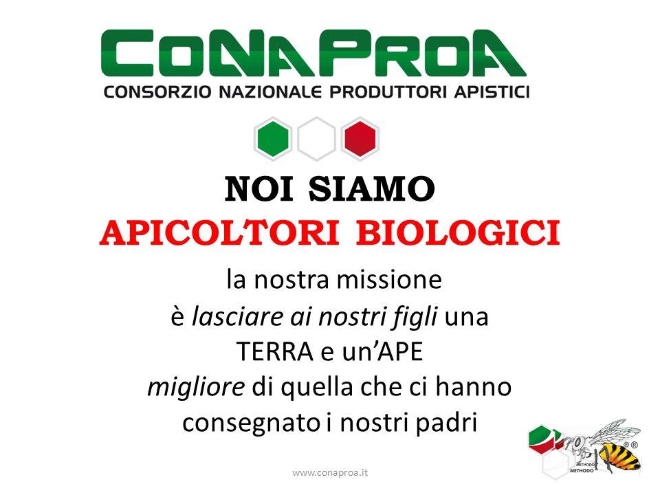 NOI SIAMO APICOLTORI BIOLOGICI CASERTANI la TERRA casertana ci ha dato i natali la TERRA casertana ha dato i natali alle nostre imprese www.conaproa.it