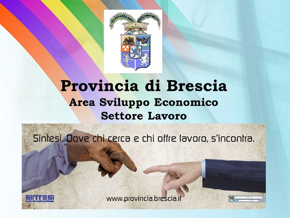 Provincia di Brescia Area Sviluppo Economico Settore Lavoro