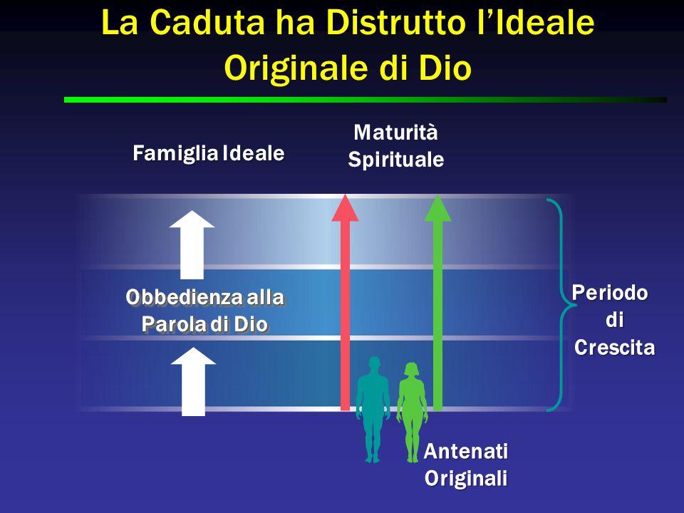 Famiglia Ideale PeriododiCrescita Obbedienza alla Parola di Dio Obbedienza alla Parola di Dio Maturità Spirituale AntenatiOriginali La Caduta ha Distr