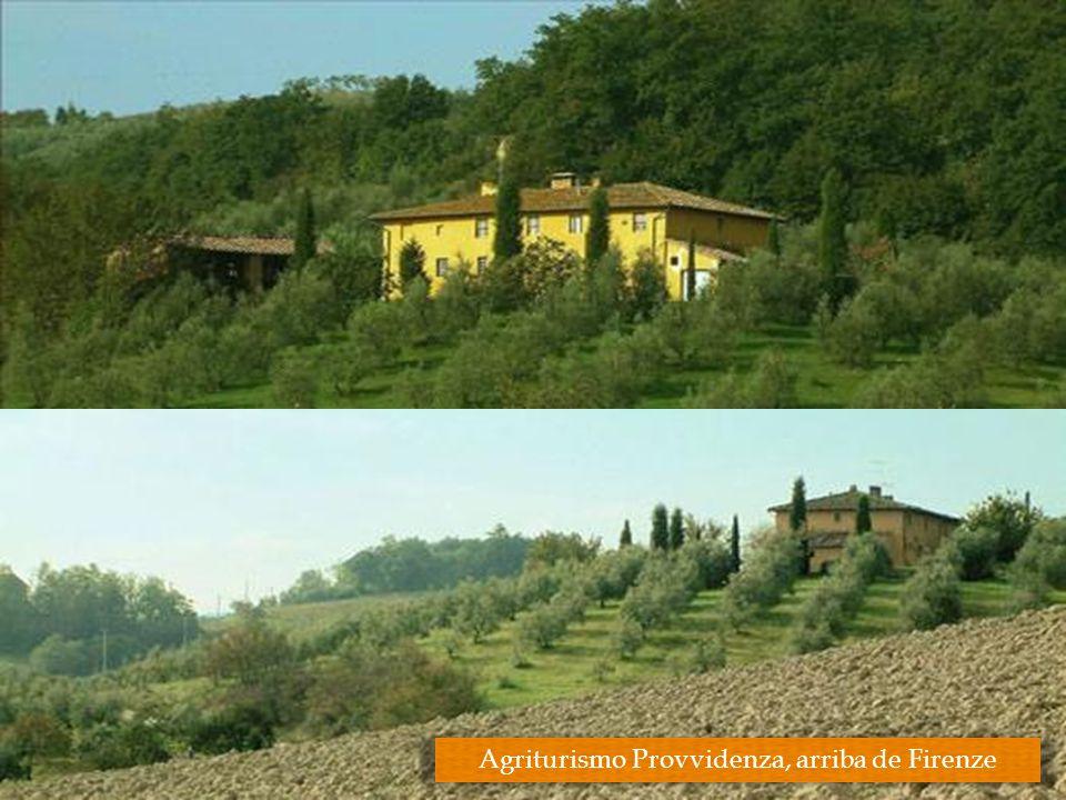 Agriturismo Provvidenza, arriba de Firenze
