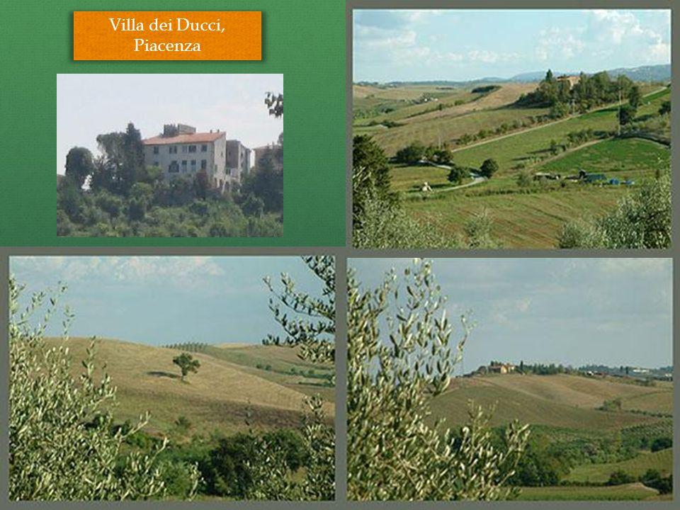Villa dei Ducci, Piacenza