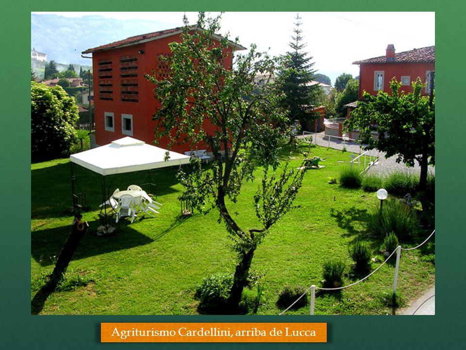 Agriturismo Cardellini, arriba de Lucca