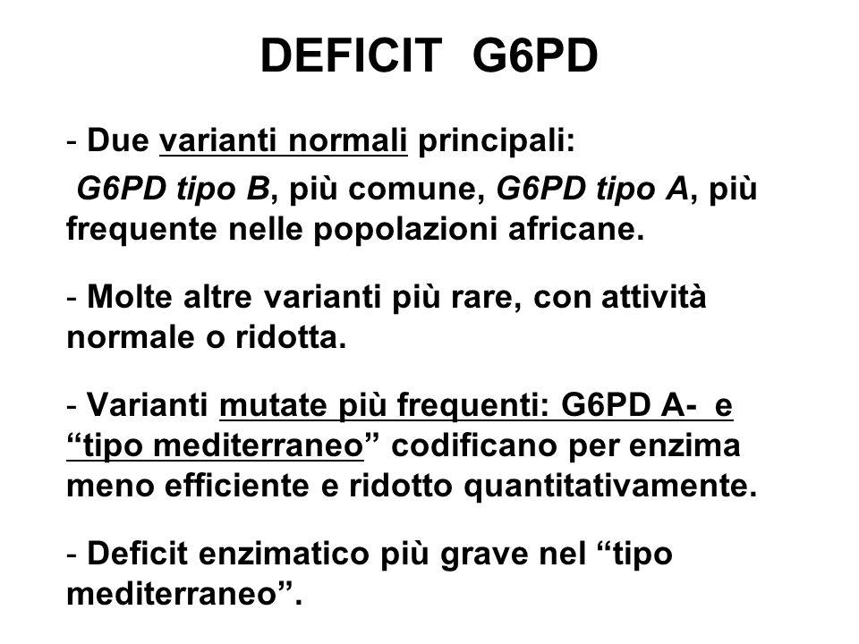 DEFICIT G6PD - Due varianti normali principali: G6PD tipo B, più comune, G6PD tipo A, più frequente nelle popolazioni africane.