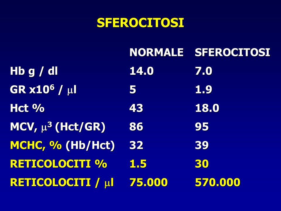 SFEROCITOSI NORMALESFEROCITOSI Hb g / dl 14.07.0 GR x10 6 /  l 51.9 Hct % 4318.0 MCV,  3 (Hct/GR) 8695 MCHC, % (Hb/Hct) 3239 RETICOLOCITI % 1.530 RE