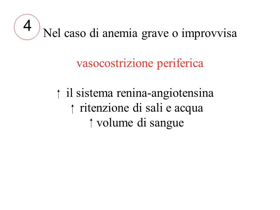 Nel caso di anemia grave o improvvisa vasocostrizione periferica il sistema renina-angiotensina ritenzione di sali e acqua volume di sangue 4