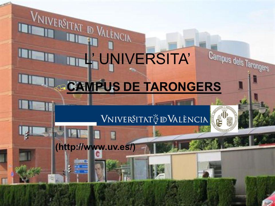 L' UNIVERSITA'  CAMPUS DE TARONGERS (http://www.uv.es/)