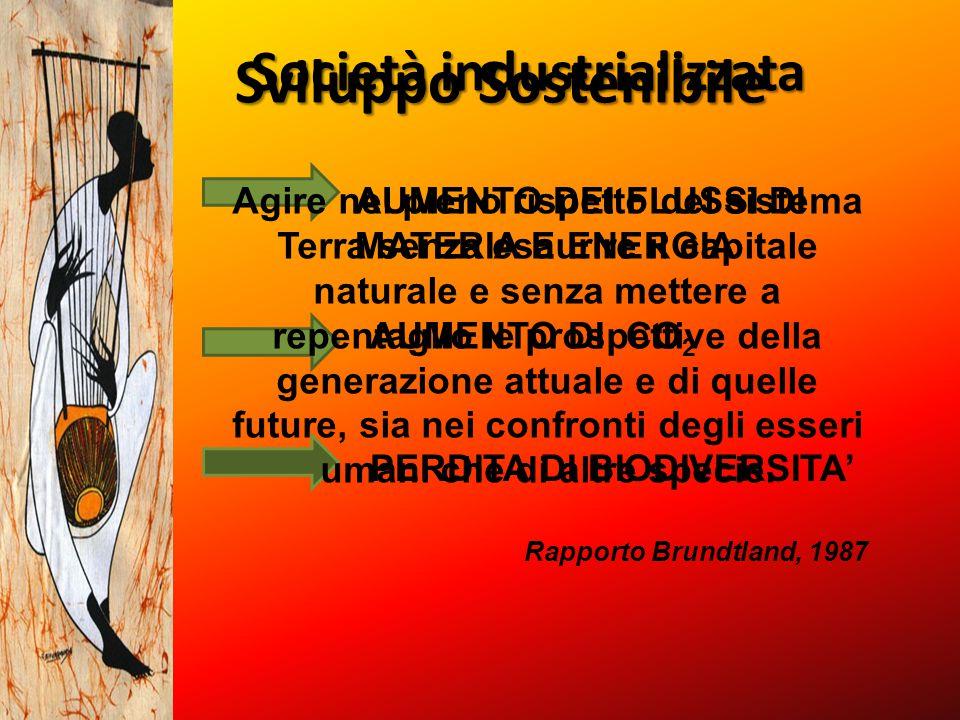 Società industrializzata AUMENTO DEI FLUSSI DI MATERIA E ENERGIA AUMENTO DI CO 2 PERDITA DI BIODIVERSITA' Sviluppo Sostenibile Agire nel pieno rispett