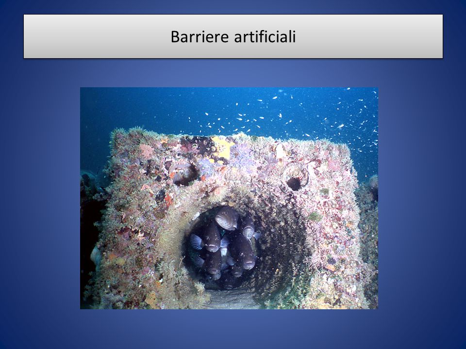 Barriere artificiali