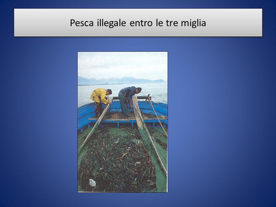 Pesca illegale entro le tre miglia