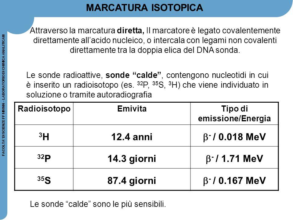 """FACOLTA' DI SCIENZE FF MM NN – LABORATORIO DI CHIMICA ANALITICAIII Le sonde radioattive, sonde """"calde"""", contengono nucleotidi in cui è inserito un rad"""