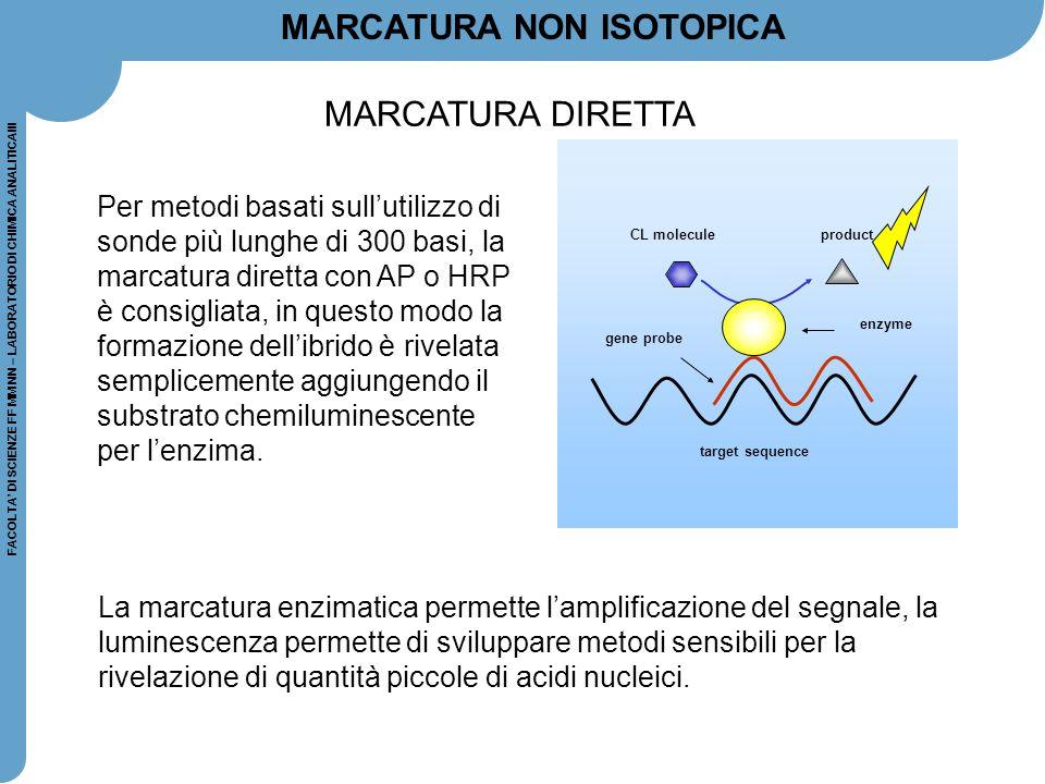 FACOLTA' DI SCIENZE FF MM NN – LABORATORIO DI CHIMICA ANALITICAIII MARCATURA NON ISOTOPICA La marcatura enzimatica permette l'amplificazione del segna