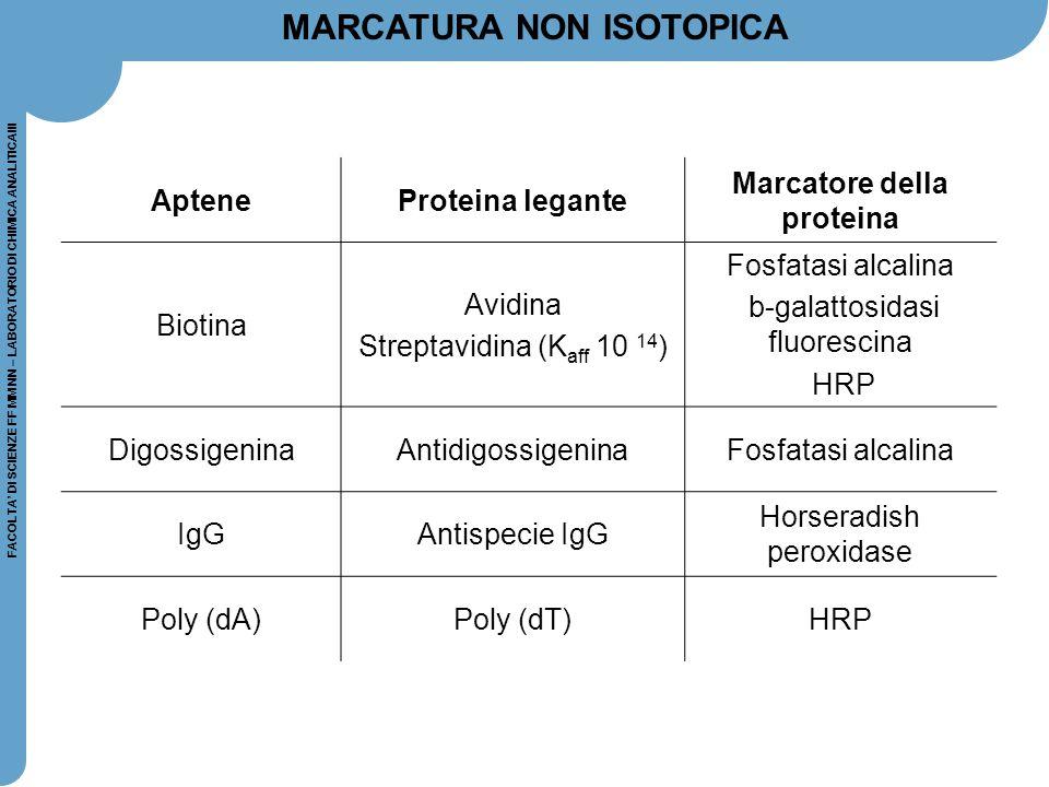 FACOLTA' DI SCIENZE FF MM NN – LABORATORIO DI CHIMICA ANALITICAIII MARCATURA NON ISOTOPICA ApteneProteina legante Marcatore della proteina Biotina Avi