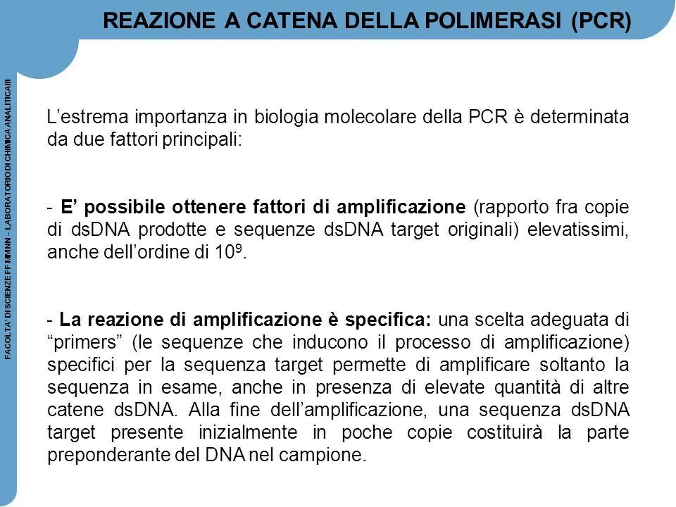 L'estrema importanza in biologia molecolare della PCR è determinata da due fattori principali: - E' possibile ottenere fattori di amplificazione (rapp