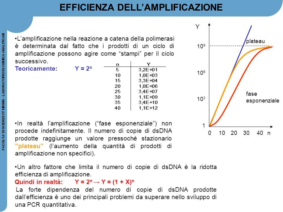 FACOLTA' DI SCIENZE FF MM NN – LABORATORIO DI CHIMICA ANALITICAIII 0 10 20 30 40 n plateau fase esponenziale 10 9 10 6 10 3 1 Y L'amplificazione nella