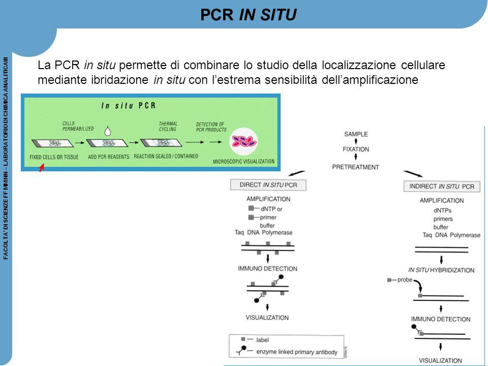 FACOLTA' DI SCIENZE FF MM NN – LABORATORIO DI CHIMICA ANALITICAIII PCR IN SITU La PCR in situ permette di combinare lo studio della localizzazione cel