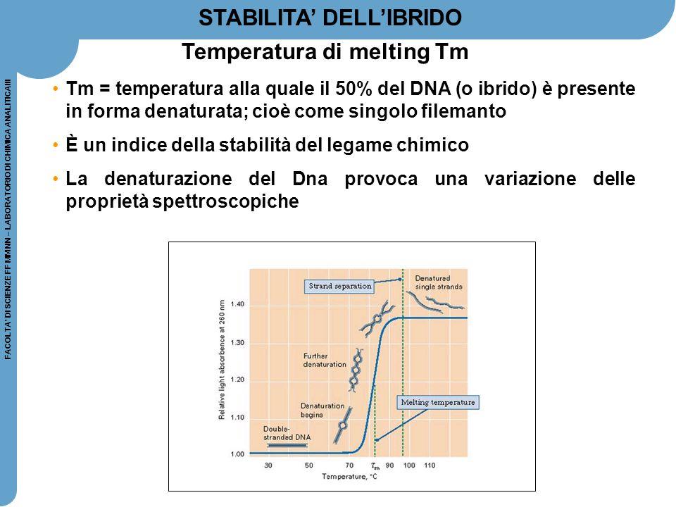 FACOLTA' DI SCIENZE FF MM NN – LABORATORIO DI CHIMICA ANALITICAIII L'ENERGIA necessaria per separare due filamenti complementari di DNA dipende da: LUNGHEZZA dei filamenti COMPOSIZIONE di basi azotate (la coppia GC possiede un legame idrogeno in più rispetto alla coppia AT, quindi filamenti ricchi in GC richiedono maggiore energia per esser separati)  COMPLEMENTARIETA' delle catene di DNA: catene non perfettamente complementari fra di loro (con una o più basi mismatched ) si legano ugualmente, ma con energia minore.