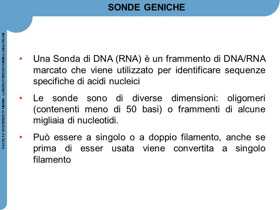FACOLTA' DI SCIENZE FF MM NN – LABORATORIO DI CHIMICA ANALITICAIII Una Sonda di DNA (RNA) è un frammento di DNA/RNA marcato che viene utilizzato per i