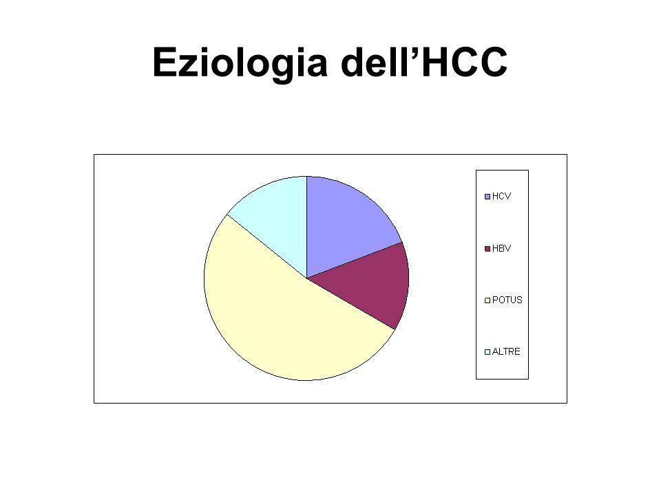 Eziologia dell'HCC