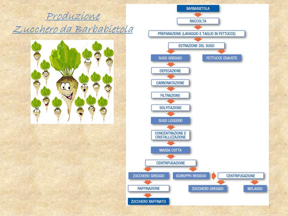 Produzione Zucchero da Barbabietola 7