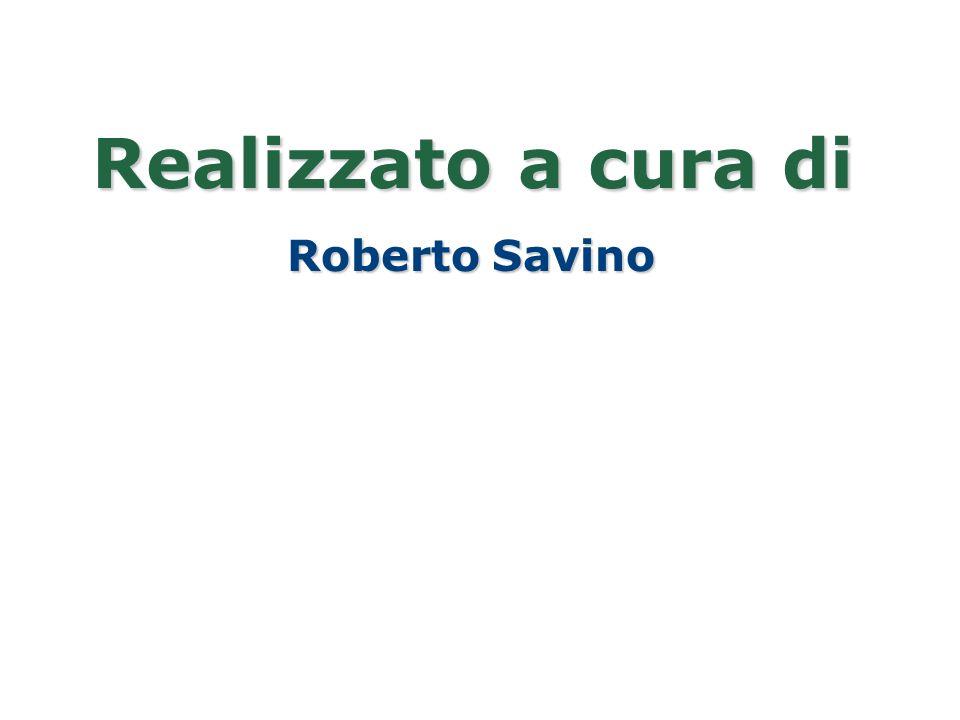 Realizzato a cura di Roberto Savino