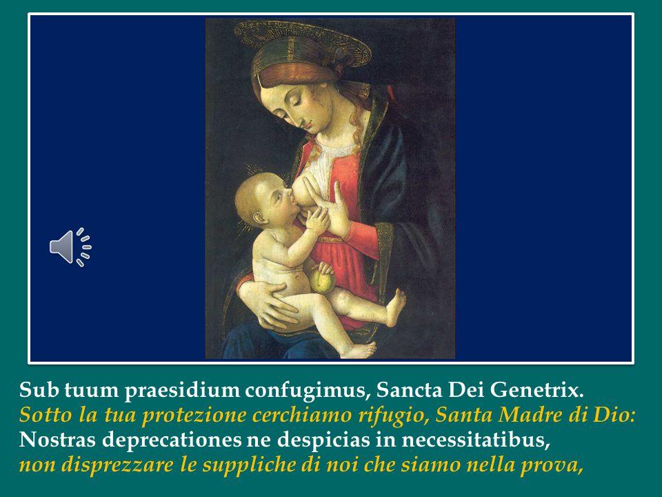 """quando all'entrata della Chiesa gridavano ai loro pastori questo saluto rivolto alla Madonna: """"Santa Madre di Dio!"""". Tutti insieme, tre volte, ripetia"""